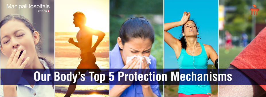 Our Body's Top 5 Protection Mechanisms