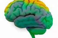 New technique offers a more detailed view of brain activity