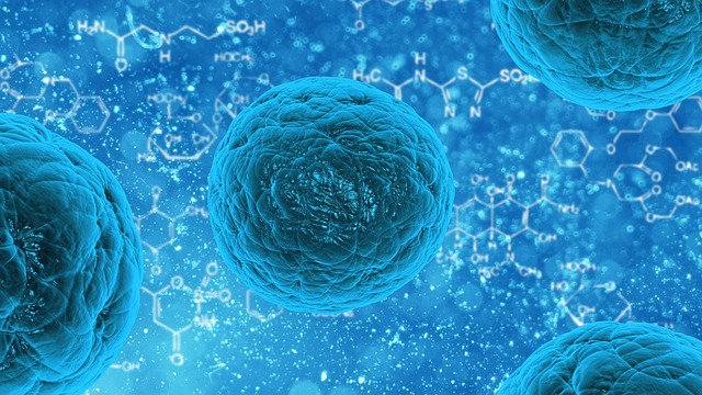 Study sheds light on role of mutations in metastasized cancer