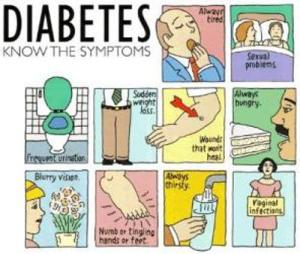 THE DIABETES DIRECTORY