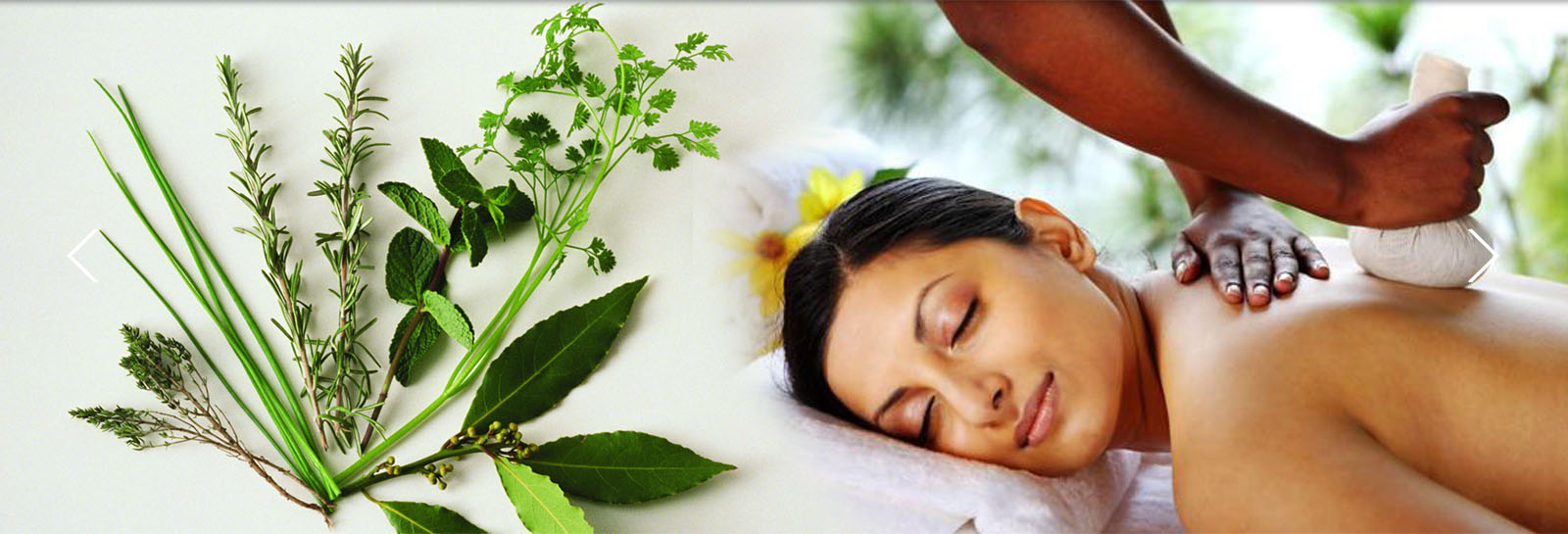Ladies Health Care, Symptoms, Causes and Ayurveda Treatment