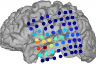 Inside the unconscious brain