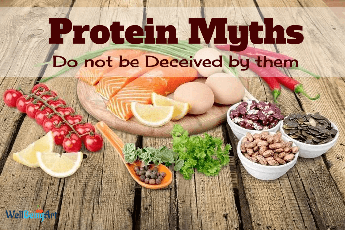Common Myths about Protein