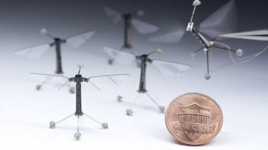Tiny Robots Move and Think Like Insects