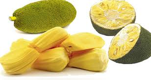 The jack of fruits – jack fruit