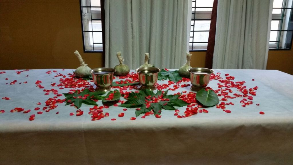 An American's First Ayurveda Treatment at ARTH