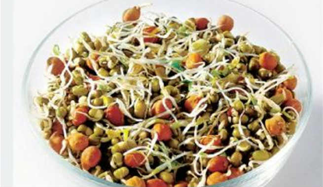 Why you should include sprouts in your diet