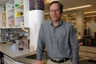 Surprising find could lead to better manufacturing options for cancer-fighting antibodies