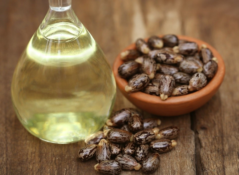 HOW CASTOR OIL HELPS YOUR HAIR?
