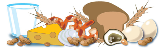 Homeopathy and Food Allergies