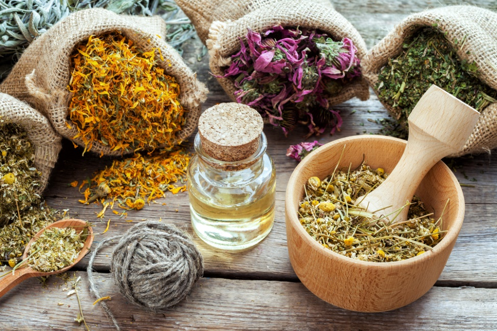 Best Herbs for Anxiety and Panic Attacks