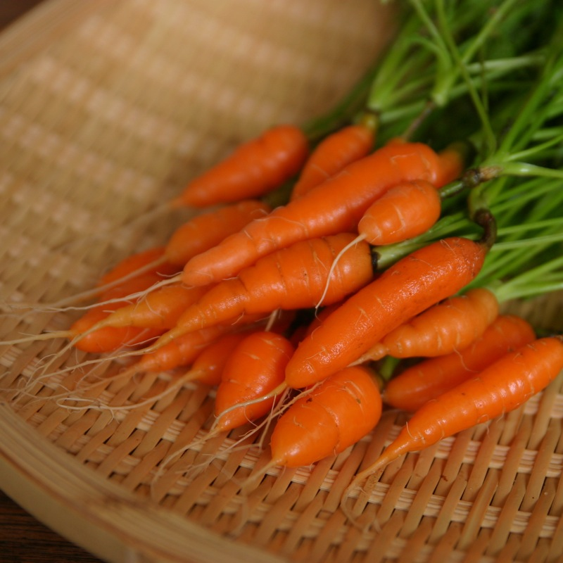 HEALTH BENEFITS OF EATING CARROTS