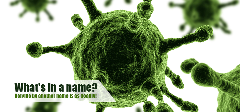 What's in a name? Dengue by another name is as deadly!