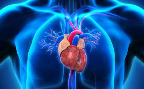 Cardiomyopathy: Causes and Symptoms
