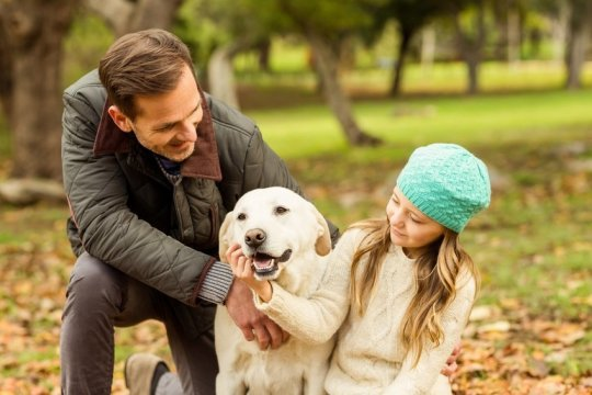 How Dog-Speak Helps You and Your Pet Bond