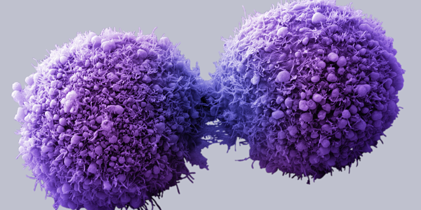 Cancer-fighting bacteria