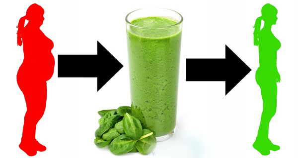 Eat Spinach and Lose Weight