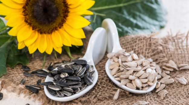 Remarkable Medical Advantages of Sunflower Seeds