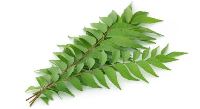 Seven Reasons To Include Curry Leaves In Your Cooking