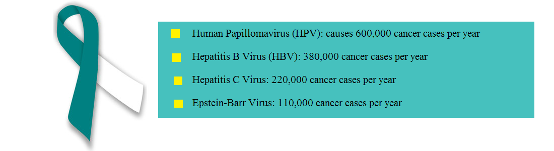 HPV and Carcinoma of the Cervix