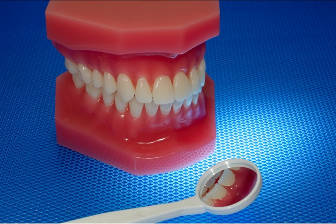 Oral Health and Nutrition During the Life Cycle