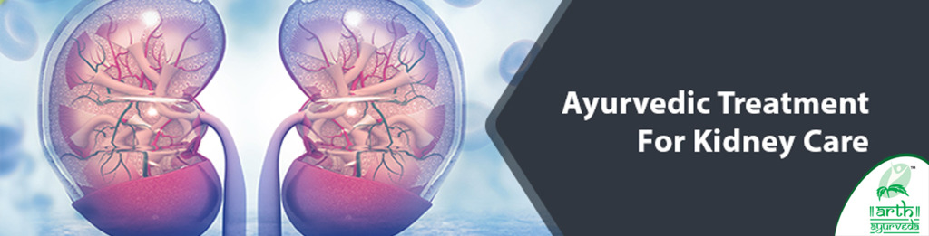 Ayurvedic Treatment for Kidney Care