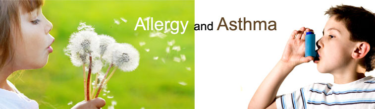 The Relationship Between Allergies and Asthma