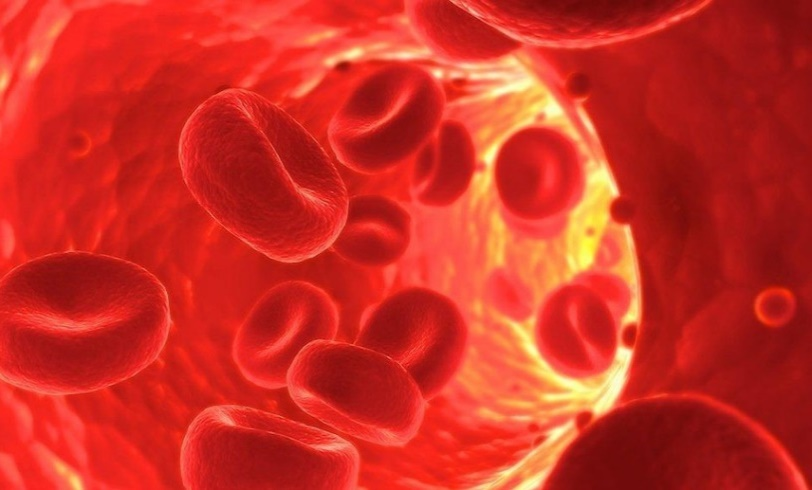 PLATELET RICH PLASMA: WHAT IS PRP TREATMENT?