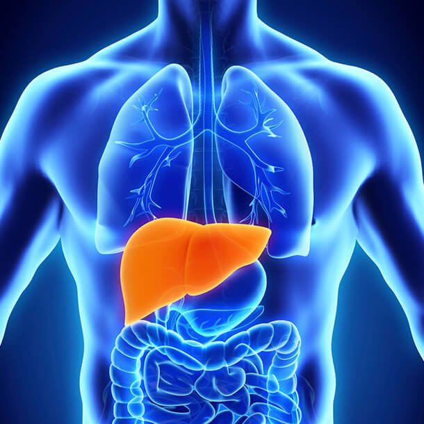 Hepatitis: Causes and Types