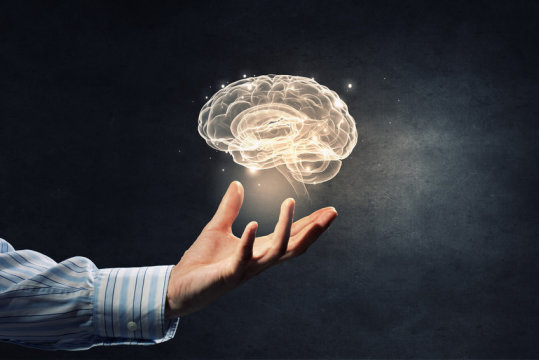 Scientists track unexpected mechanisms of memory