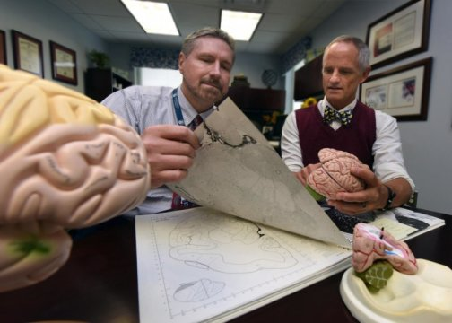 Memory Improved With Electrical Stimulation