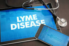 """ Lyme Bacteria Survive 28-Day Course of Antibiotics Months After Infection"""