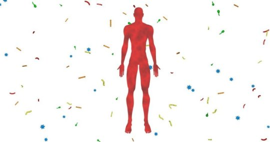 Genetics or lifestyle: What is it that shapes our microbiome?