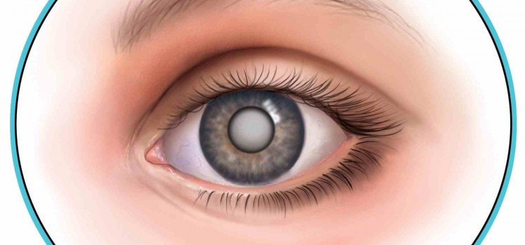 What is Ophthalmology?