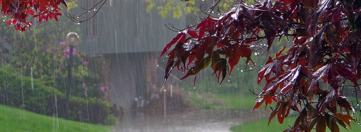 Must-Know Monsoon Health Tips