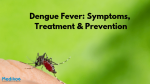 Dengue Fever: Symptoms, Treatment & Prevention