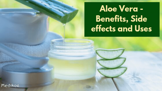 Aloe Vera - Benefits, Side effects and Uses