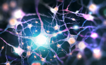 A new brain simulating artificial synaptic device