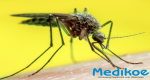 Yellow Fever: Symptoms, Treatment, and Prevention