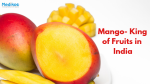 Mango- King of Fruits in India