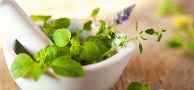Naturopathy & Its Proficiencies